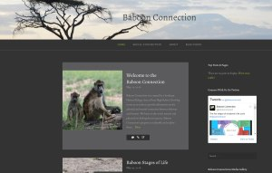 baboonconnection